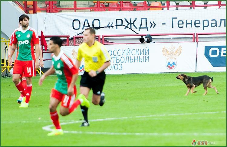 ФК Локомотив - ФК Амкар 3-38