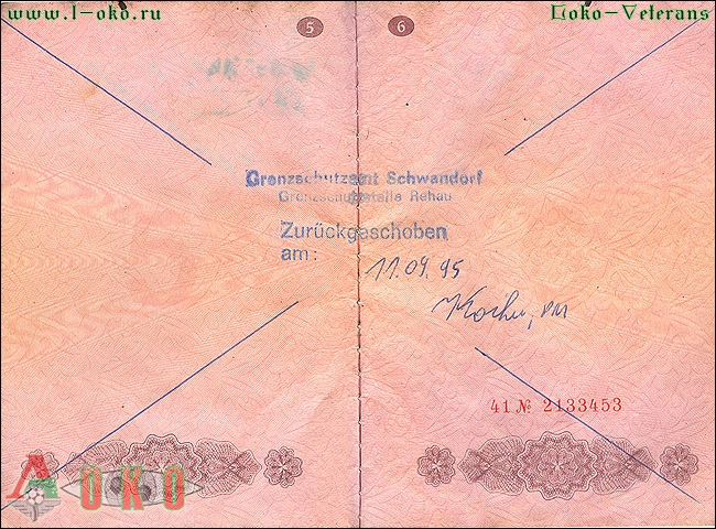 Аннулированный паспорт Меновазина